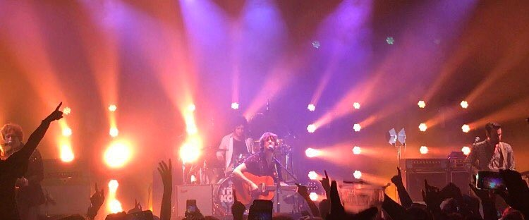The Kooks, live, band, performance